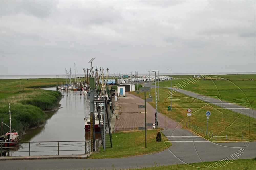2010_07_nordsee_13