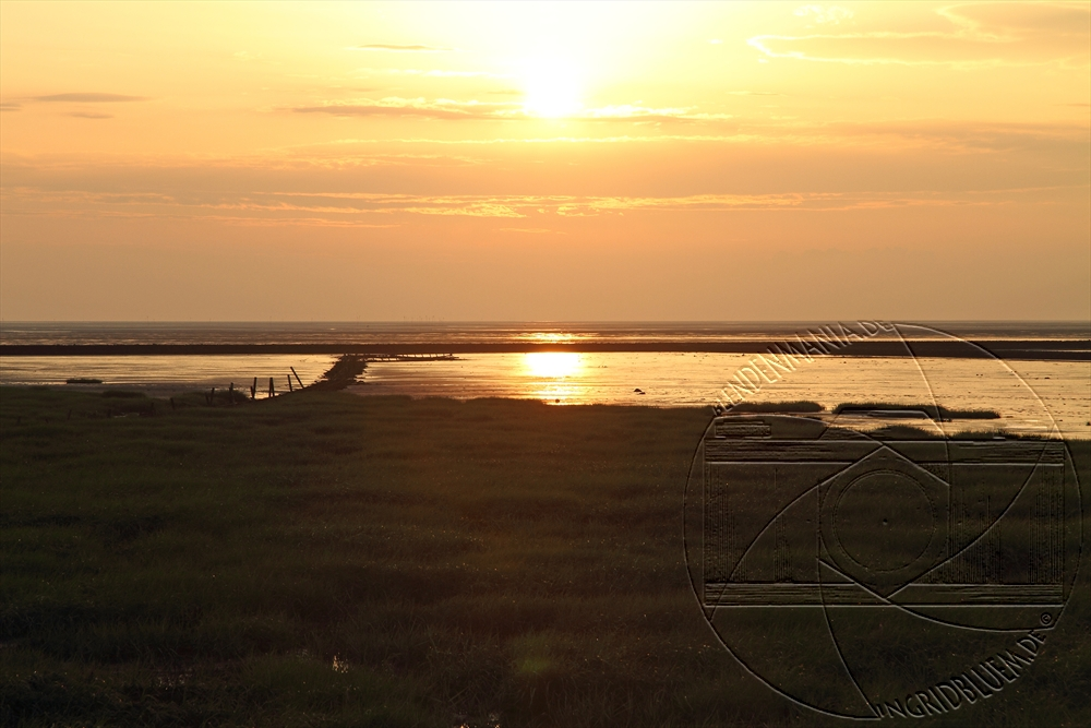 2010_07_nordsee_8