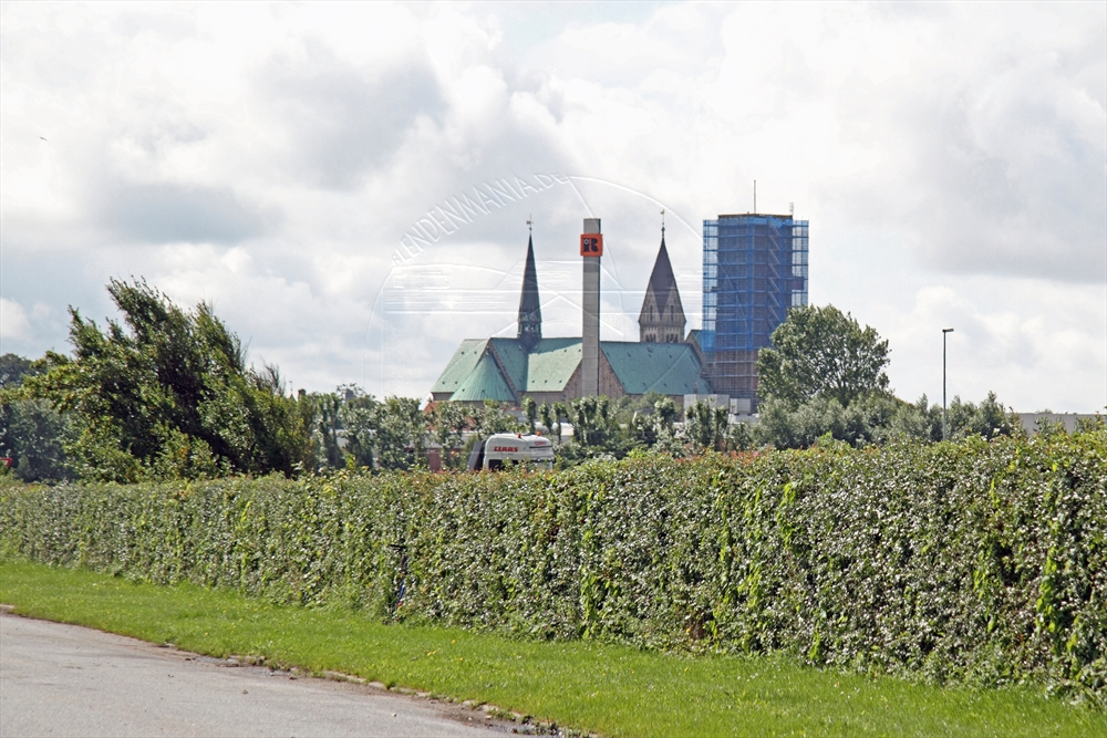 2011_08_sommer_3_ribe_1