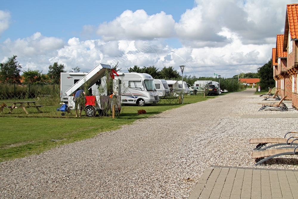 2011_08_sommer_3_ribe_15