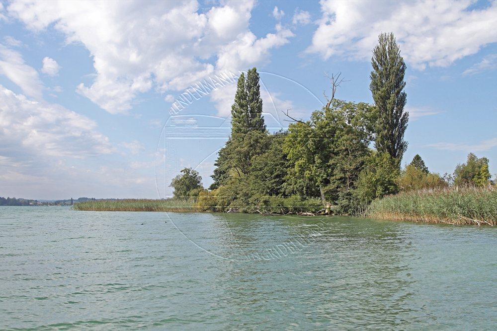2012_08_schweiz_08_erlach11