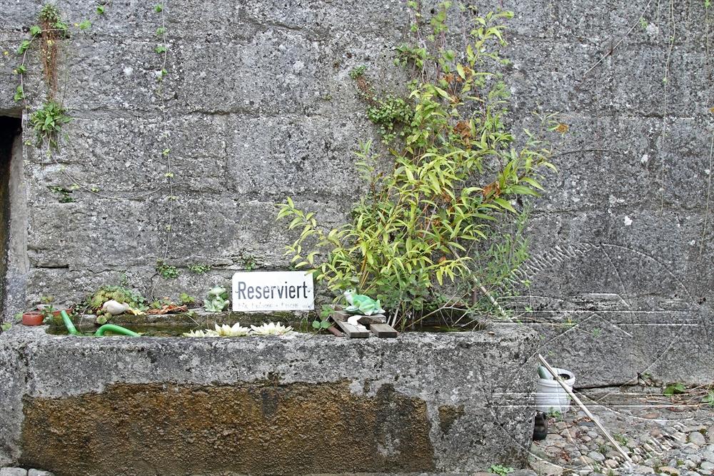 2012_08_schweiz_08_erlach21